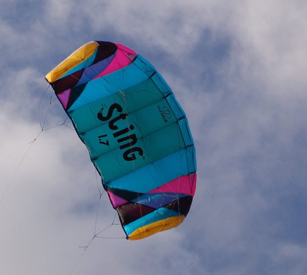 Flexifoil 1.7m2/2.2m Wide Sting 4-line Power Kite with 90 Day! By World Record Power Kite Designer - Safe, Reliable and Durable Power Kiting, Kite Training and Traction Kiting.