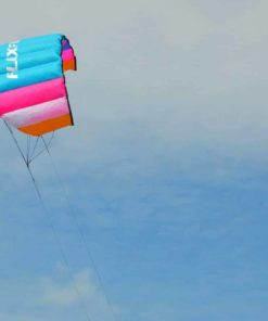 FLEXIFOIL 1.45m 2-Line Buzz Power Kite with 90 Day! By World Record Winning Designer of 2-line and 4-line Power Kites - Safe, Strong, Reliable and Durable Family Outdoor Activity